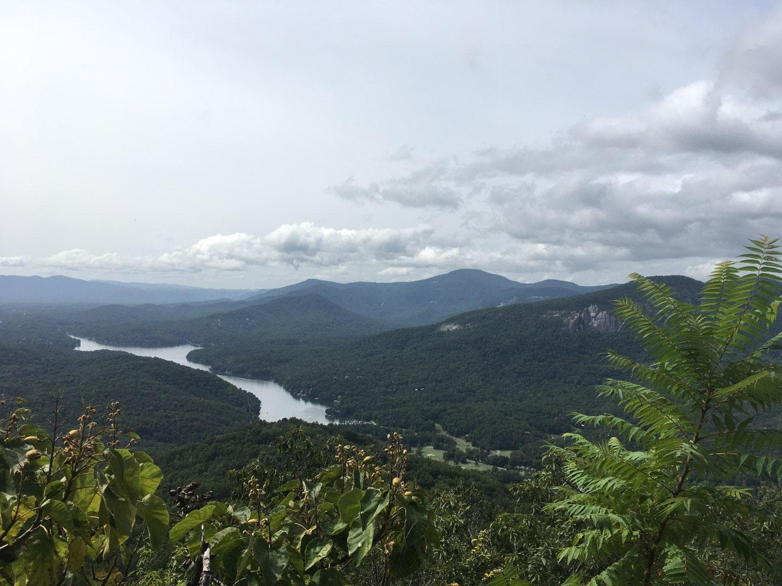 Young's Mountain Trail