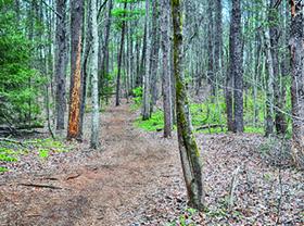 Dittmer-Watts Nature Trail Park