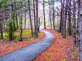 Rutherford County Walking Path
